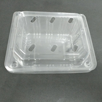 High quality disposable plastic fruit tray and strawberry packaging container