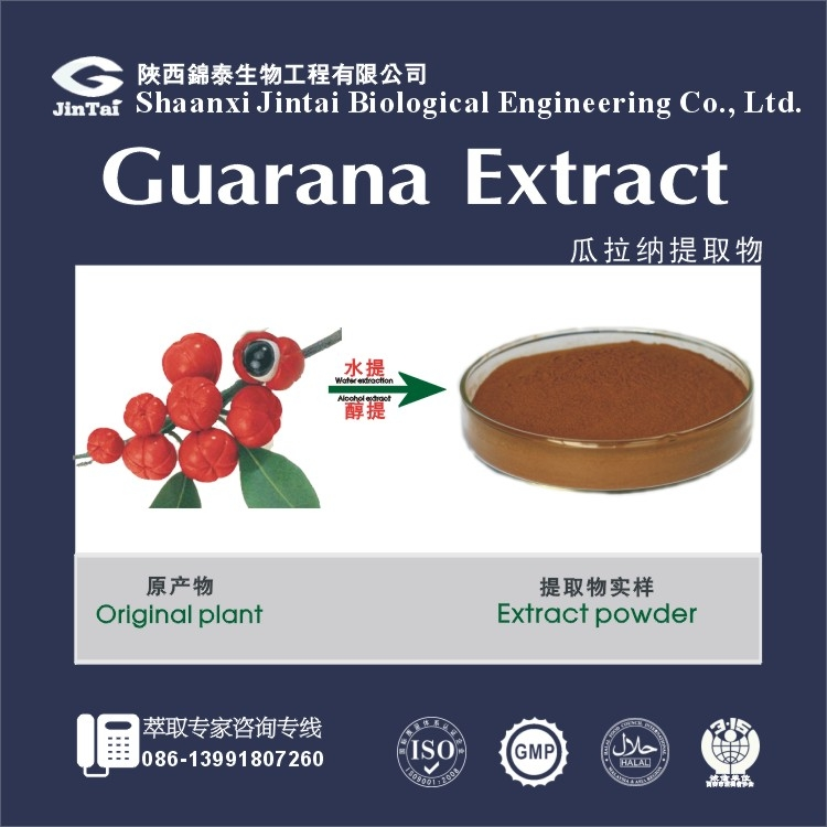 top quality pure organic guarana extract