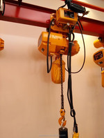 Wholesale small size electric chain hoist