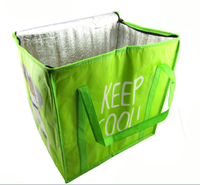 Hot sale reuseable cheap picnic insulated lunch cooler bag for promotion