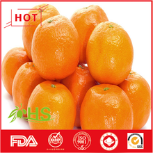 Fresh Mandarin Orange Wholesale Price