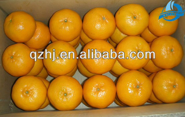 Name All Citrus Fruits -- Mandarin Orange 2013
