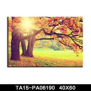 Creative frameless canvas prints art decor international landscaping canvas painting