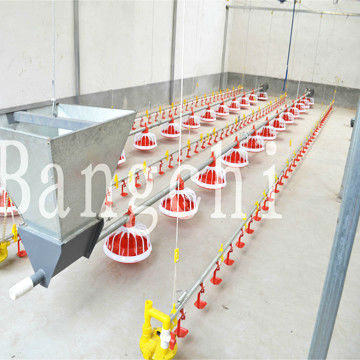 BC Series Broiler Feeding Line For Poultry House