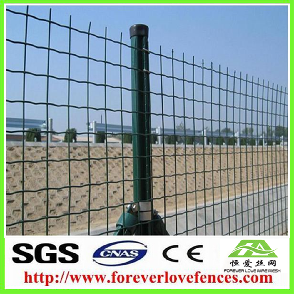 High quality 6ft holland wire sheep mesh fence supplied by in China