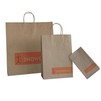 Promotional Laminated Brown Paper Bag