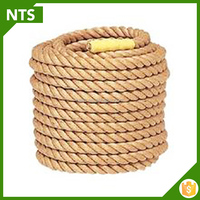 NTS Eco-friendly Hemp Rope For Sale