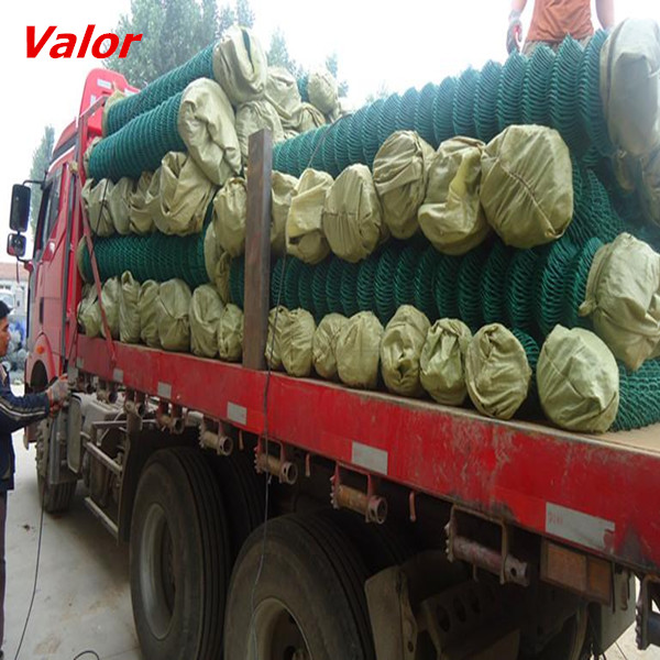 Vendite calde calcio terra fence da valor anping wire mesh