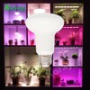 Changable Emitting Color SMD2835 R80 LED Grow Light Bulb for Family Agriculture Products Plant