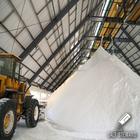 bulk road rock salt