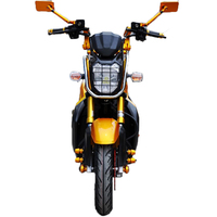 Chinese Low Price 3000W Electric Motorcycle