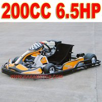 6.5HP 200cc Indoor Go Kart