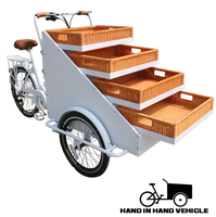 3 wheel electric assist cargo bike food vending