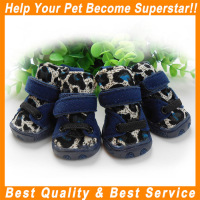 JML wholesale china products with Strap sports pet footwear
