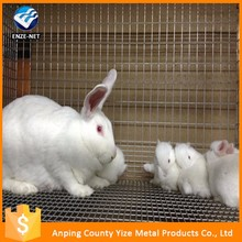 Hot sale factory price 12 holes rabbit cages commercial poultry equipment