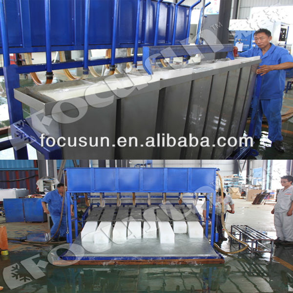 5 Tons 10Tons Block Ice Making Plant Built in Container