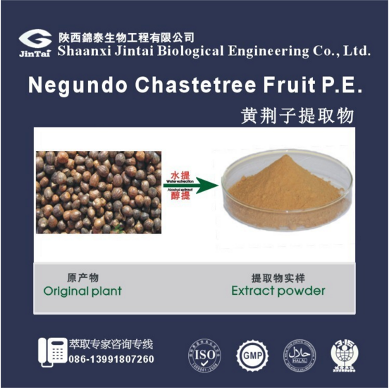 hot sell Inhibition of cancer cell product vitex negundo L extract