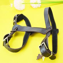Fashionable Best-Selling service dog harness
