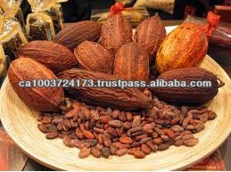 High Grade Dried Flaour Cocoa Beans for Sale