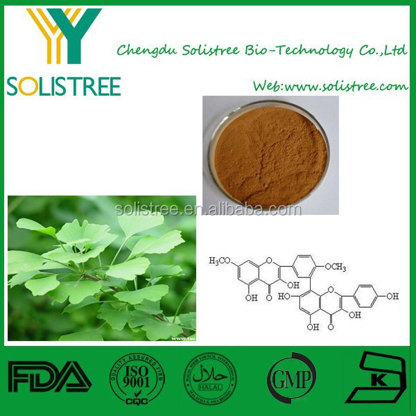 pure natural ginkgo biloba leaf extract with competitive price