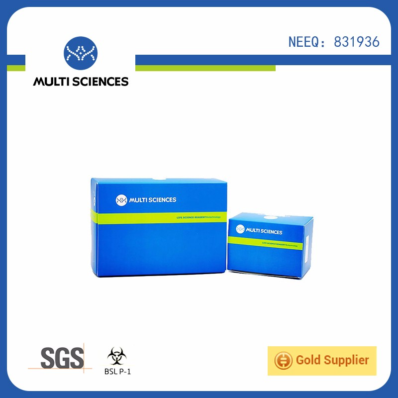 2016 Hot selling Mouse CCL22/MDC ELISA Kit with OEM/ODM service