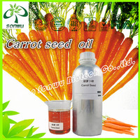 Natural carrot seed oil/carrot seed essential oil