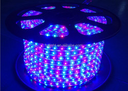 High Voltage (120V) LED Strip Light 164 ft Roll No Driver Required SMD5050