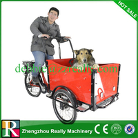 passenger and cargo motorized tricycle tricycle cargo shineray