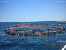 HDPE sea cage in the ocean
