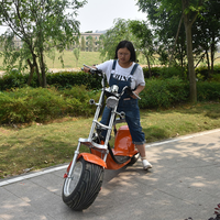 2016 most popular new style fat tire large electric scooters for adults