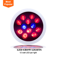 Good selling red and blue full spectrum 12w led grow lights