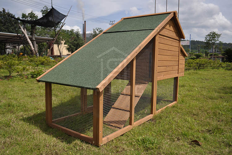 DXH019 wholesale cheap price large chicken house