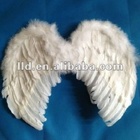 719011 big beautiful feather wing