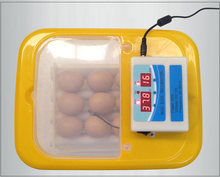 Hold 32 pcs chicken egg domestic incubator hatchery machine WQ-09 with CE certification