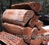 Firewood for Ovens ,Cafeteria , Restaurants, Roof top Restaurant