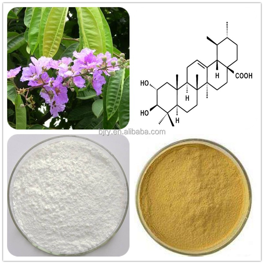 Bulk Pure 1% 5% 10% 20% 98% Corosolic Acid from Banaba Leaf fast shipping