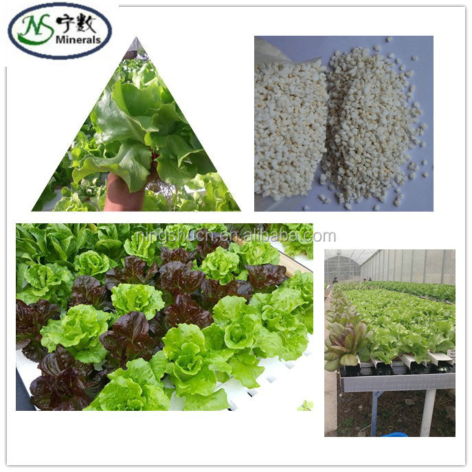 Growing Media Expanded Perlite For Malaysian Agriculture Hydroponics Horticulture