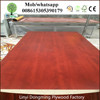 Sanded MDF Sheet Prices