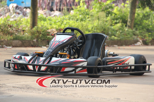 110cc 8hp f1 racing go karts for sale/racing karting for adults