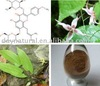 /product-gs/epimedium-leaf-extract-icariin-high-quality-testosteron-powder-395796539.html