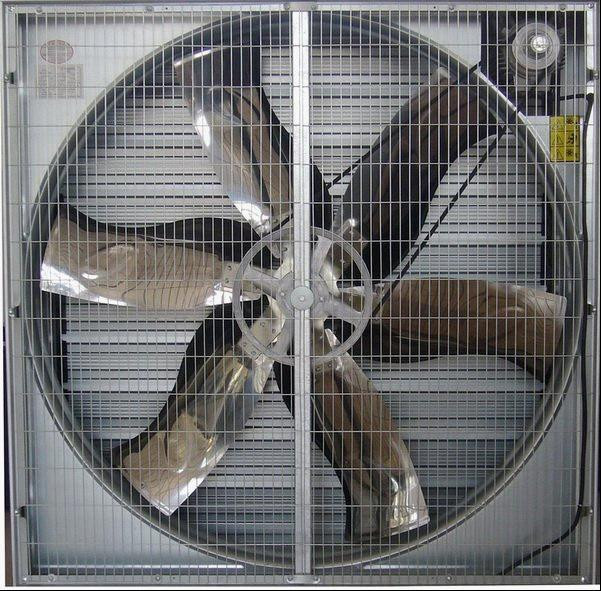 Professional factory poultry equipment centrifugal belt drive exhaust fan with siemens motor low price