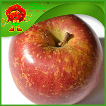 China sweet apple for skin beauty red delicious apples