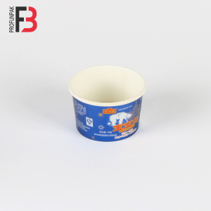 New Design OEM 12 Oz Ice Cream Cups