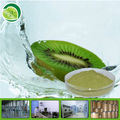 100% natural kiwi vacuum powder