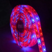 Benled Led Grow Light Strip Factory Supply Red And Blue Multi-ratio Flexible Waterproof Led Plant Grow Strip