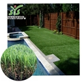 D Shaped Thinner Fiber Landscaping Artificial Grass