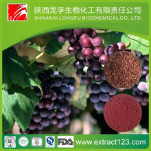 Manufacturer supply high quality grape seed extract (high orac value)