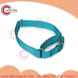 green martingale collar China Manufacture