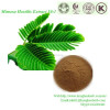 Herb Medicine Mimosa Hostilis Root Bark Extract