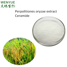 High quality Rice bran extract Ceramide 10% purity CAS NO.104404-17-3
